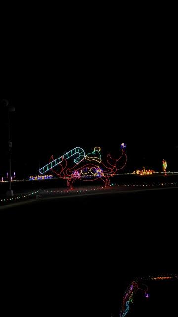 Detroit Magic of Lights