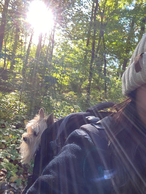 Hiking with Jack